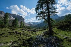 Da malga Flavona a malga Campa (Parco naturale Dolomiti di Brenta - Trentino)