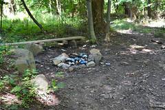 Beer Can Campfire, Staten Island Greenbelt