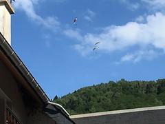 Parapente, Paragliding over Saint-Lary, France, mobile 3