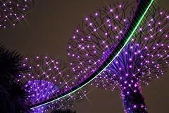 "The OCBC Sound and Light Show"" at Gardens by the Bay. Singapore. Lumix DMC FZ1000. P1060526."
