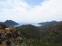 CorsicaSeaView