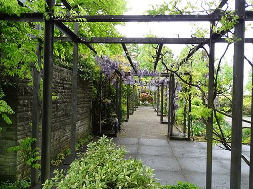 Parque Jardin de las Rosas Berna Suiza 12