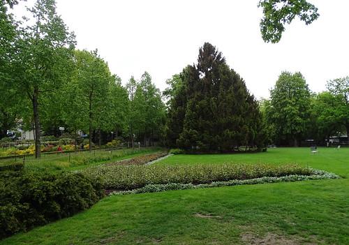 Parque Jardin de las Rosas Berna Suiza 10