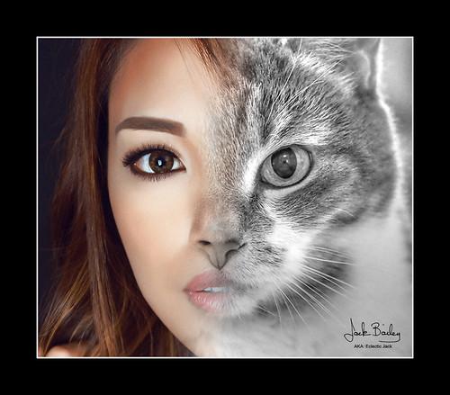 It's Cat Woman!
