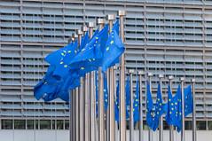 Wind weht die Flaggen der Europäischen Union vor dem Berlaymont-Gebäude in Brüssel, Belgien