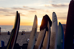 Surfboards at the Beach 09084