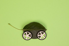 Green leaf with wheels