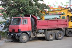 Tatra truck family