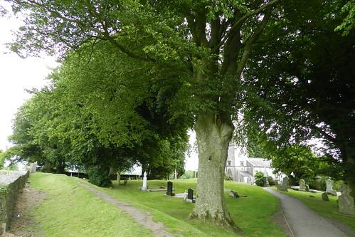 lapida cementerio Iglesia de San Patricio Colina de Tara Republica de Irlanda 03