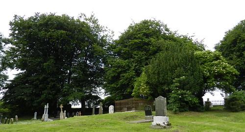 lapida cementerio Iglesia de San Patricio Colina de Tara Republica de Irlanda 08