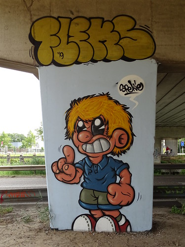 Het Zuilenkabinet Boshoverbrug Weert graffiti, artist Spekie