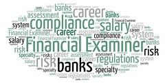 Financial Examiner