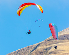 Paragliders in Ed Levin County Park
