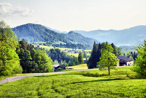 0272  Landscape Hittisau