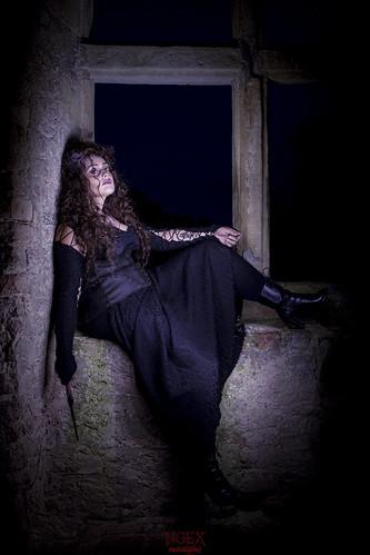 Bellatrix 11