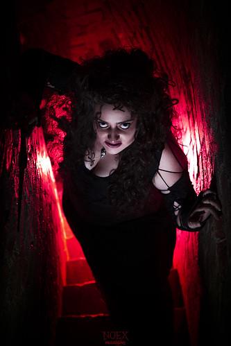 Bellatrix 10