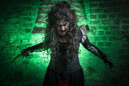 Bellatrix 02