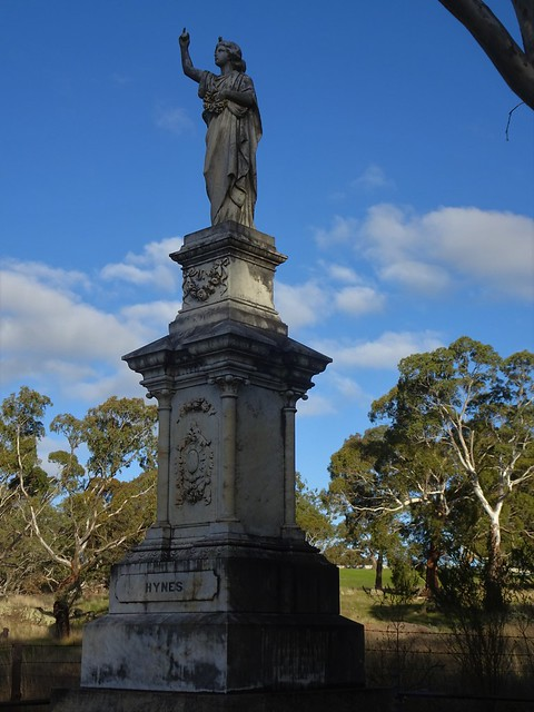 Photo:Birdwood. A grand headstone in the Birdwood Catholic cemetery. The Hynes family lived in a two storey house near Gumeracha and were district pioneers. By denisbin