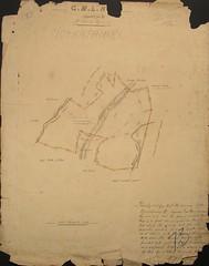 Moanataiari mining claim plan, 1877