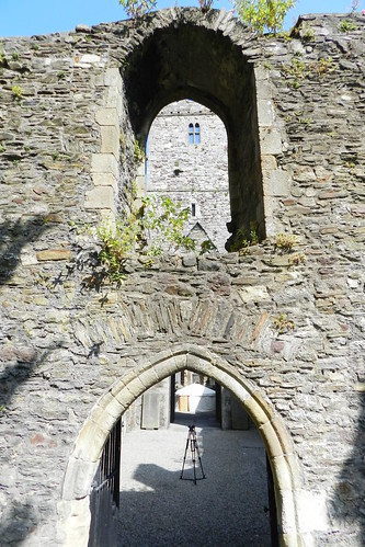 Iglesia francesa Abadia de Greyfriars ruinas Waterford Republica de Irlanda 04