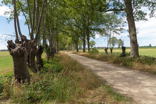 Zelhem; Oosterwijkweg