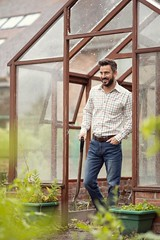 Man tending to veg growing in greenhouse