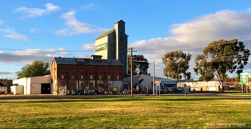 Former JJ Sullivans Pty Ltd Steam Flour Mill, Grenfell, NSW
