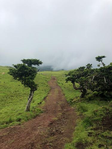 Path Lagoa do Capitão