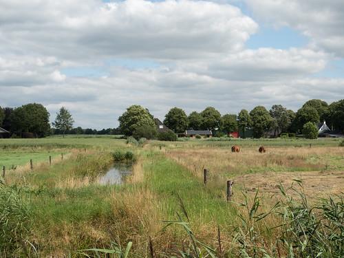 Westerbroek