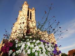 Cathédrale Saint-Pierre-et-Saint-Paul de Troyes (10)