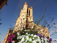 Cathédrale Saint-Pierre-et-Saint-Paul de Troyes (9)