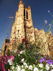 Cathédrale Saint-Pierre-et-Saint-Paul de Troyes (7)