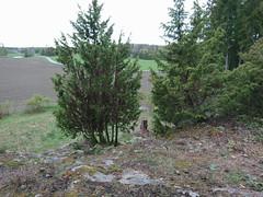 Memorial hill, Langnes, Askim, Indre Østfold, Norway