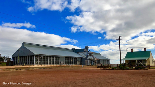 Grain Handling Facility at Mirrool, South West, NSW