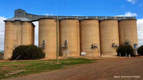 Silos & Grain Handling Facility at Mirrool, South West, NSW
