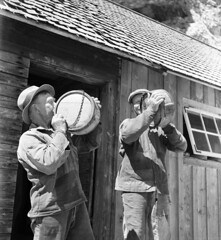 Farm workers at a drinking pause, Lilla Karlsö island, Gotland, Sweden