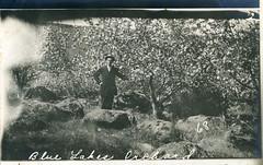 [IDAHO-J-0133] Blue Lakes Orchard