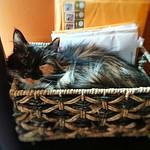 Basket loaf