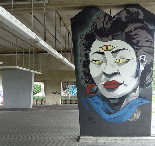 Het Zuilenkabinet Boshoverbrug Weert graffiti, artist Simian Switch (NL)