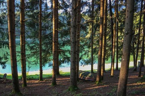 La Gruyère - Lac de Montsalvens / Ref.02401