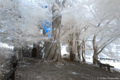 Infrared Chapel