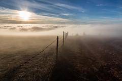 Image by Massimo_Discepoli (massimodiscepoli) and image name Line of fog photo