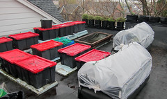 Image by Johanne Daoust (johanne_daoust) and image name LR Two insulated beds roof May 2019 photo  about