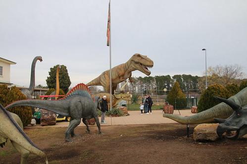 Canberra, National Dinosaur Museum  IMG_2602