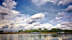 Rhein, Blick nach Frankreich.... #Kappel