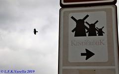 Kinderdjik, Holanda