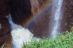 rainbow -02404