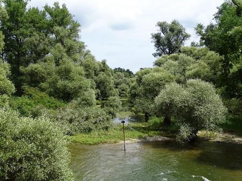 Delta de la Sauer, Weidenbruch