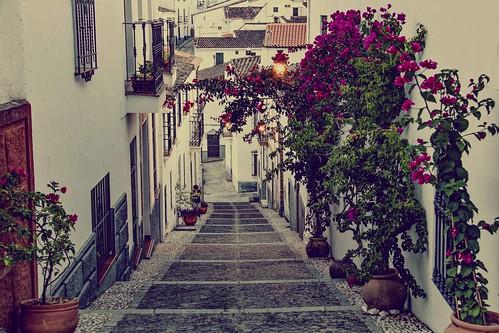 Calle arriba...o calle abajo