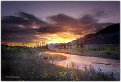 Canada_Jasper & Banff